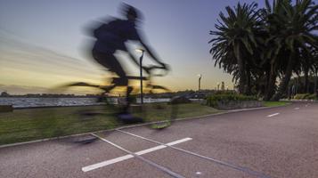 Bike/Ped Counts - RidePod BP