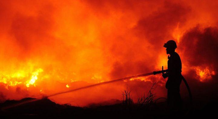 MetroCount Bushfire Appeal